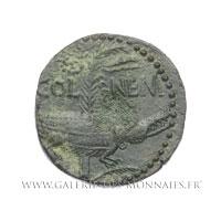 Dupondius COL NEM, As de Nîmes, groupe II, vers 8 - 3 av. J.-C.