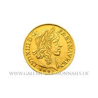Louis d'or 1er type, 1641 A Paris