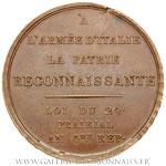 Médaille passage du Po de l'Adda et du Mincio AN 4, par SALWIRK