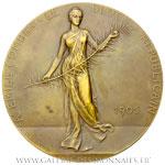 Médaille hommage à Émile COMBES 1905, par DESCHAMPS